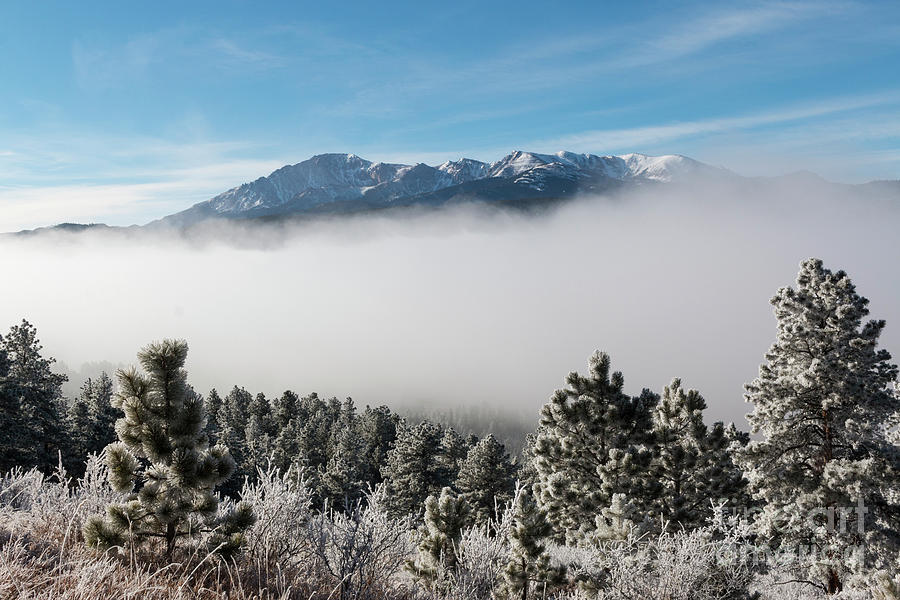 Frosty Fog Bank On Pikes Peak Photograph