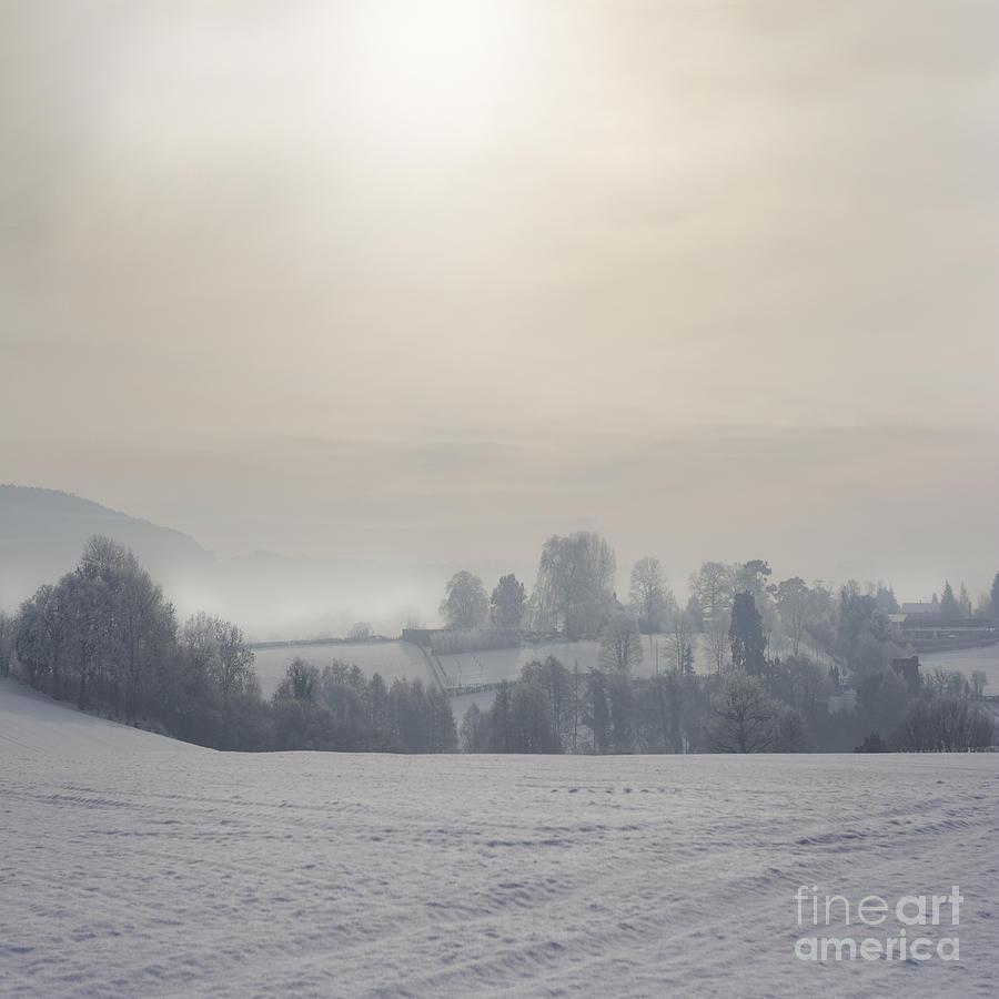 Winter Photograph - Frosty Landscape by Angel  Tarantella