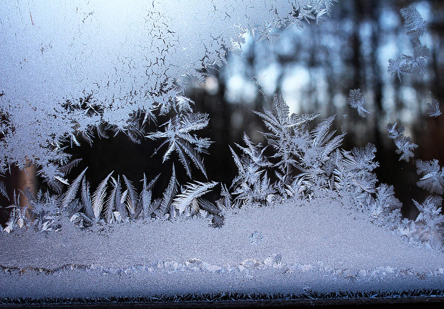 Ice Photograph - Frosty Morning Window by Liz Allyn