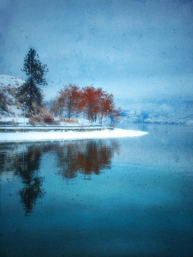 Blue Photograph - Frosty Reflection by Tara Turner