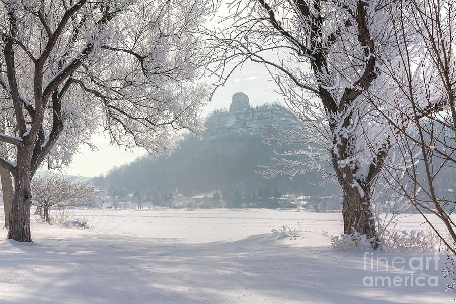 Frosty Sugarloaf Between Trees by Kari Yearous