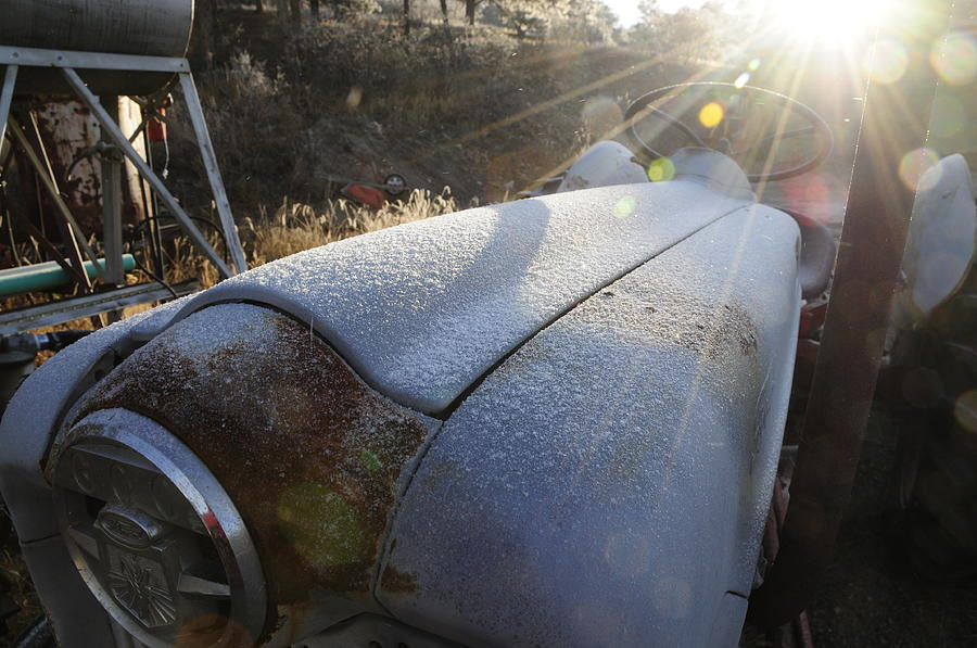 Ford Photograph - Frosty Tractor by Susie Rieple