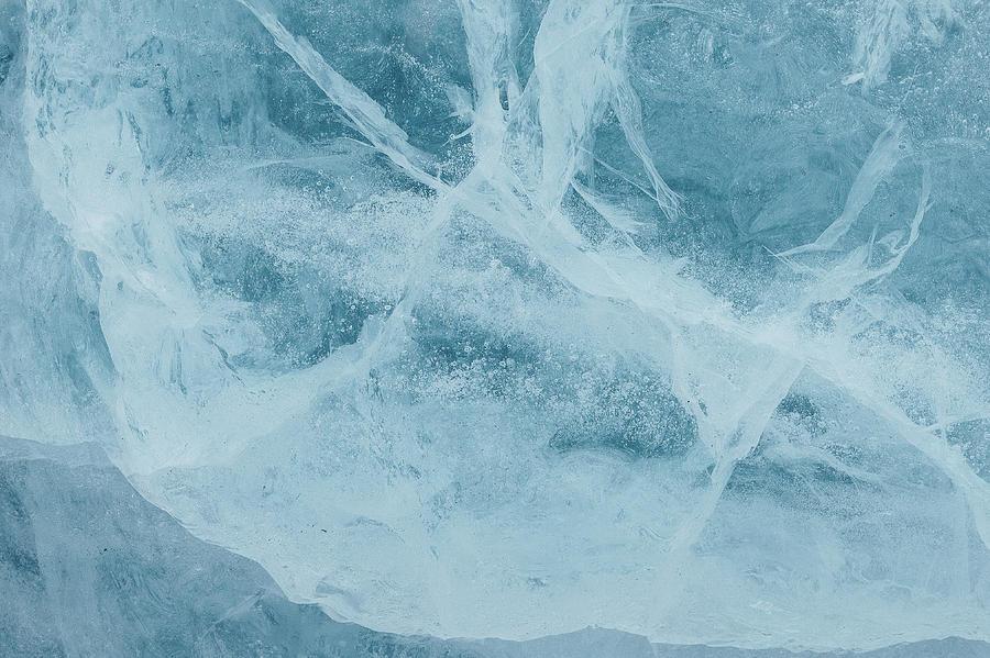Frozen  by Aldona Pivoriene