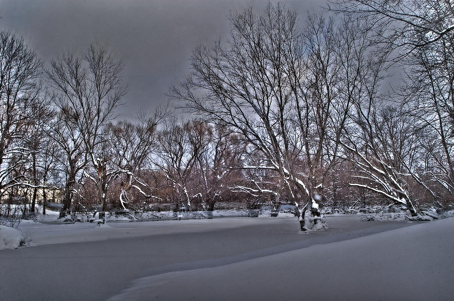 Winter Photograph - Frozen At The Creeks Edge by Steven Geer