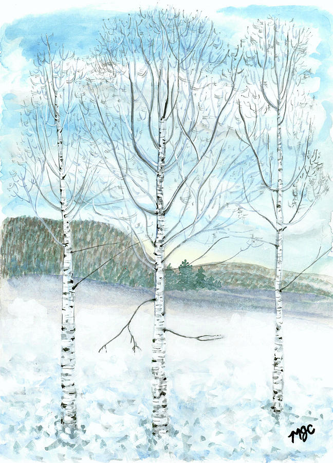 Frozen Birch Trees by Meghan Coyle