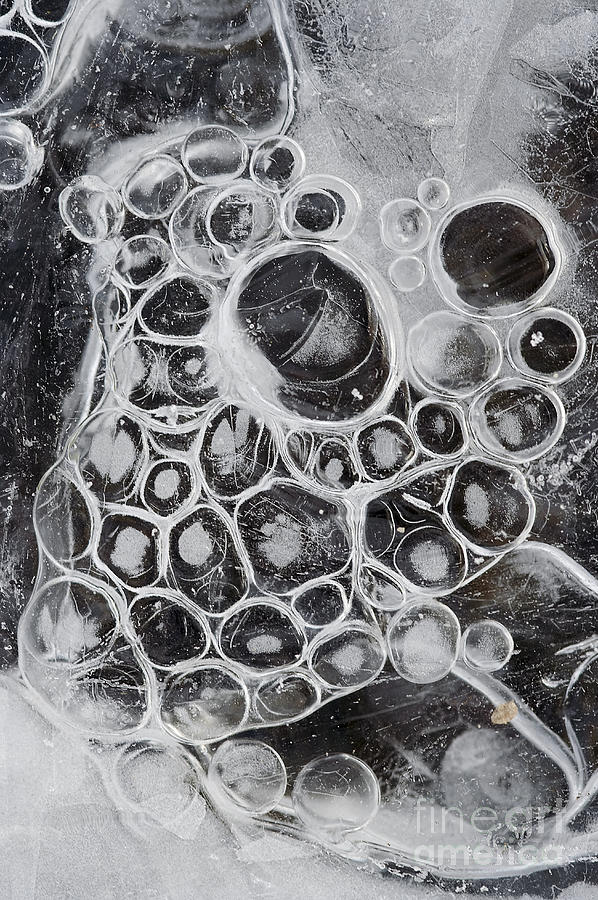 Texture Photograph - Frozen Bubbles by Michal Boubin