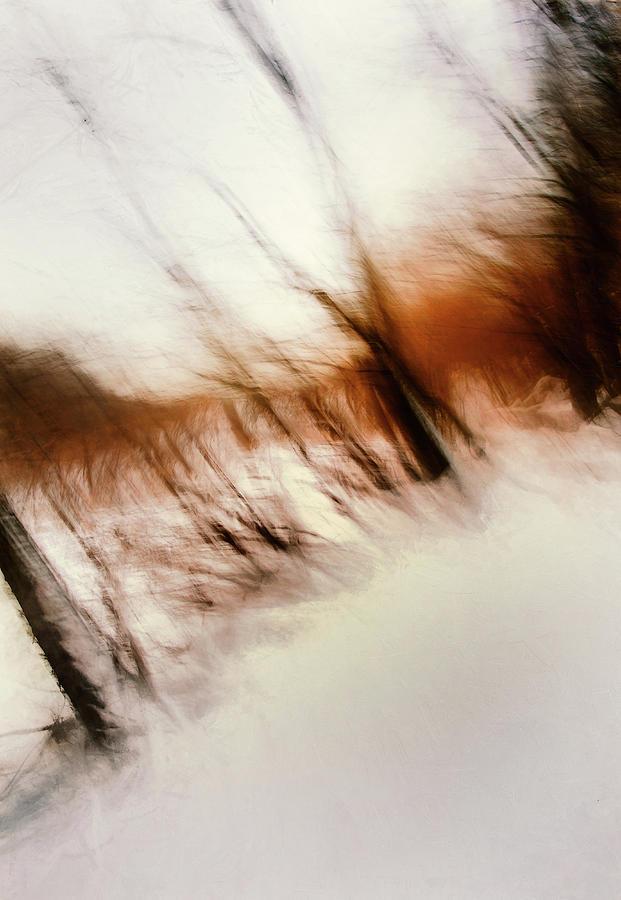 Frozen Dreams Photograph