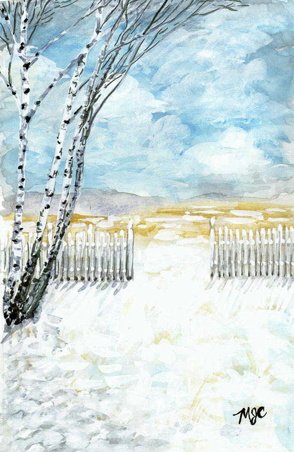 Frozen Fence by Meghan Coyle