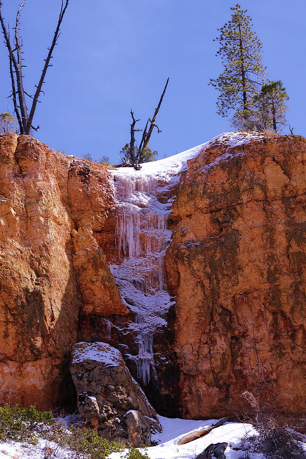 Utah Photograph - Frozen For A Moment by Viktor Savchenko