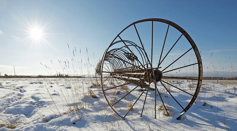 Antique Photograph - Frozen In Time. by Kelly Nelson