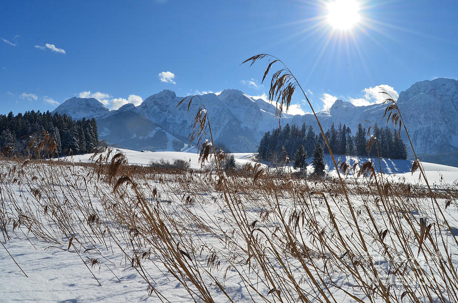 Frozen Lake And Mountains 2 Photograph
