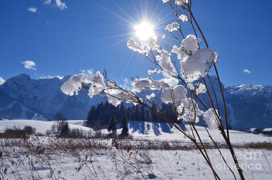 Frozen Lake And Mountains Photograph