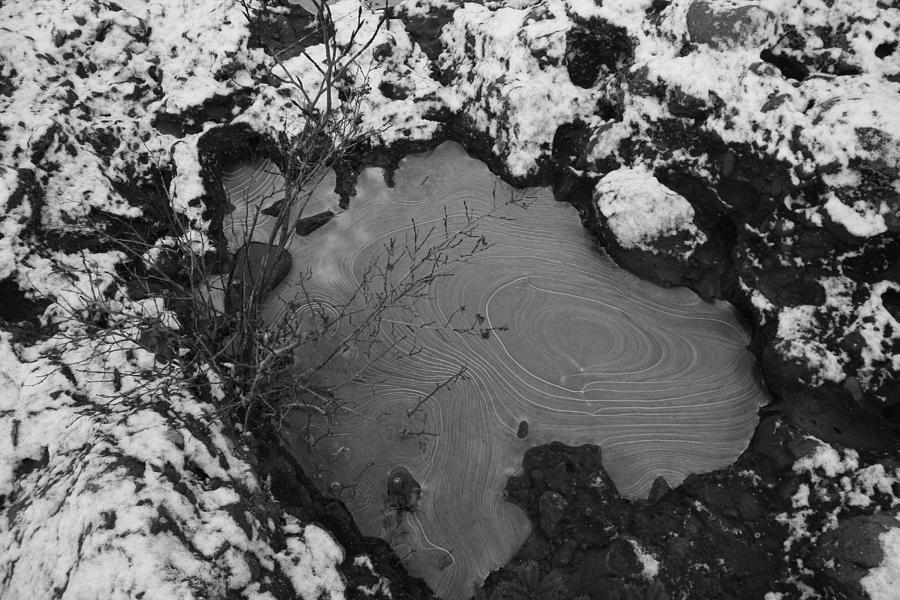 Frozen Puddle Photograph