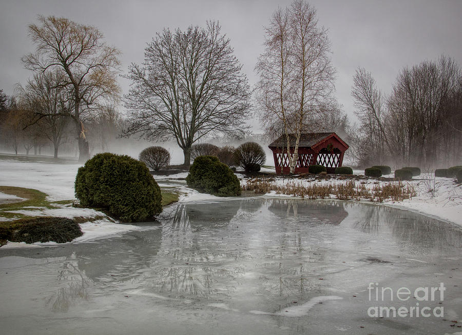 Frozen Photograph - Frozen Reflections by Diana Nault