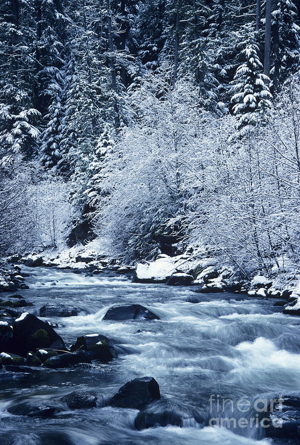 Beautiful Photograph - Frozen Salt Creek by Greg Vaughn - Printscapes