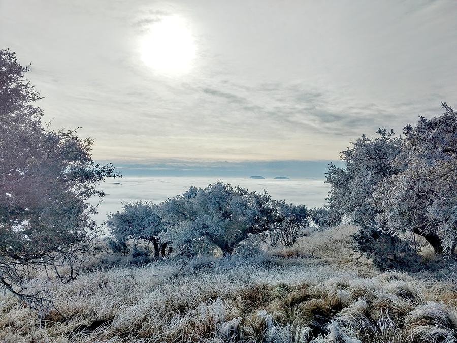 Frozen Sky Photograph