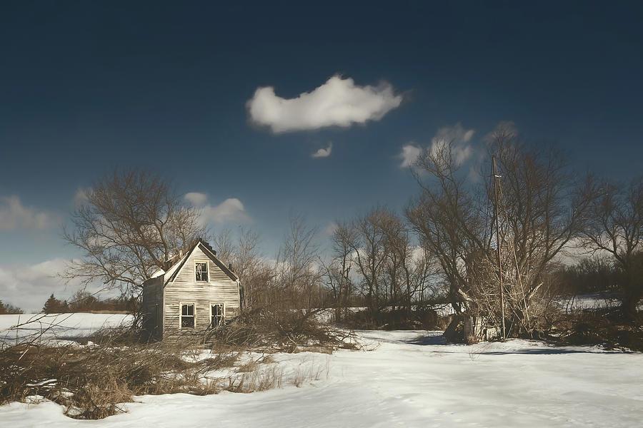 Frozen Stillness Photograph