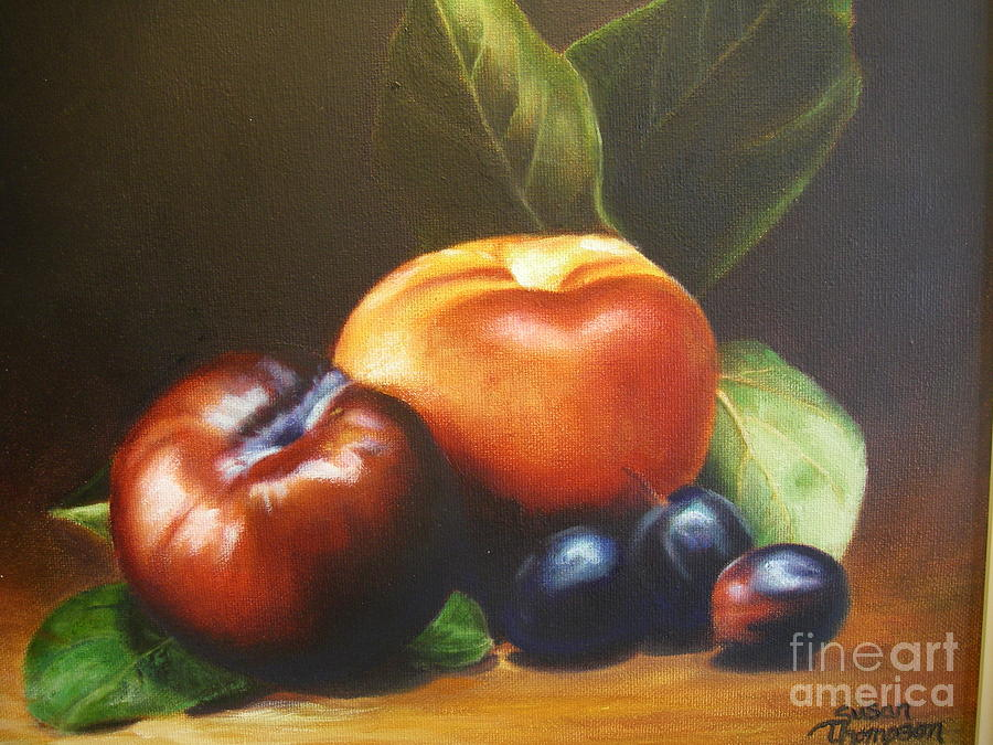 Plums Painting - Fruit by Susan Thompson