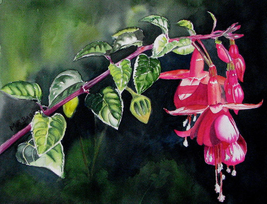 Flower Painting - Fuchsia by Maria Barry