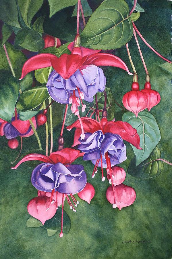 Flower Painting - Fuchsia Trio by Tina  Sander