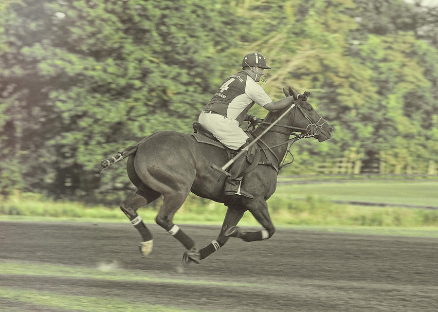 Polo Photograph - Full Gallop Pony by JAMART Photography