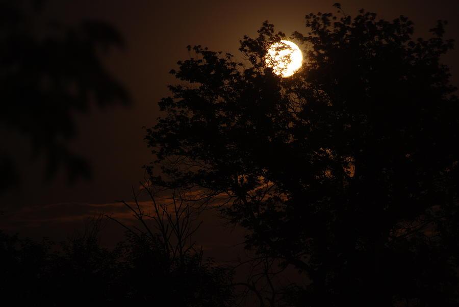 Full Moon Photograph - Full Moon 2 by Lisa Gabrius