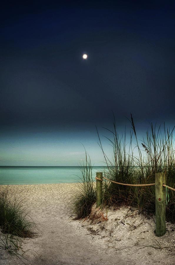 Full Moon Beach Photograph by Greg Mimbs