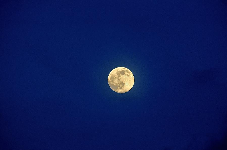 Full Moon Photograph - Full Moon by Charles J Pfohl