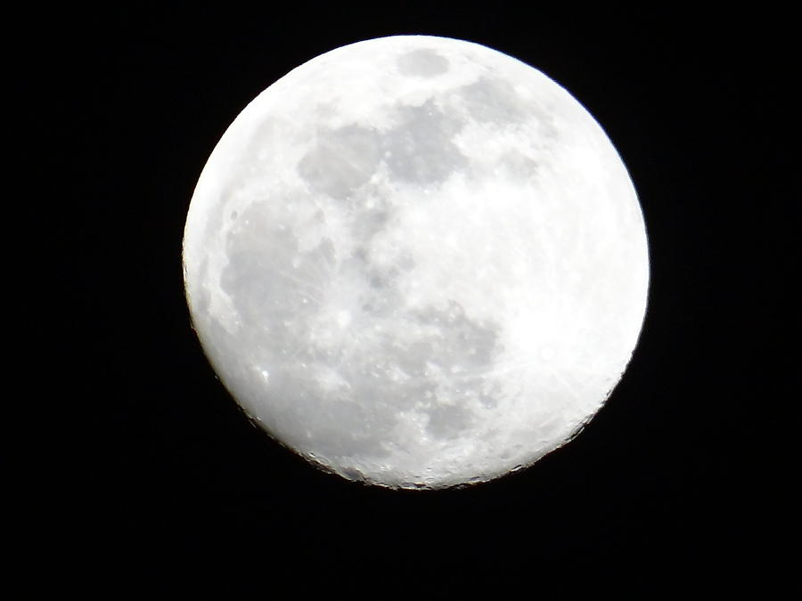 Unschooling Photograph - Full moon by Exploramum Exploramum