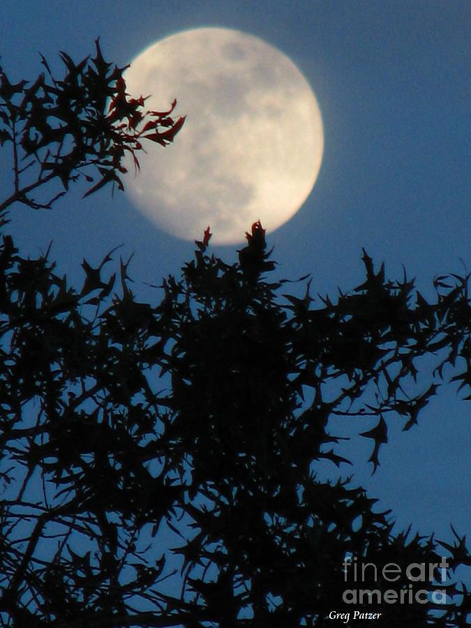 Patzer Photograph - Full Moon by Greg Patzer