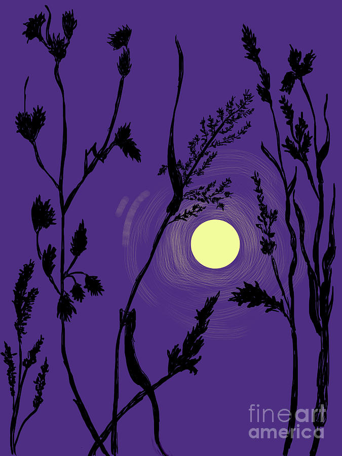 Full Moon in the Wild Grass by Dawn Senior-Trask