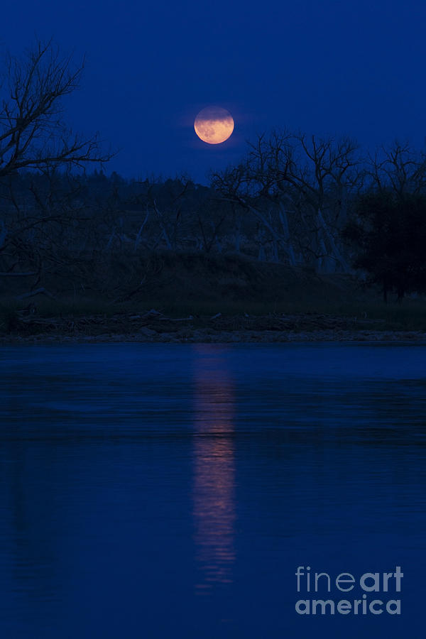 Landscape Photograph - Full Moon Over The Tongue by Shevin Childers