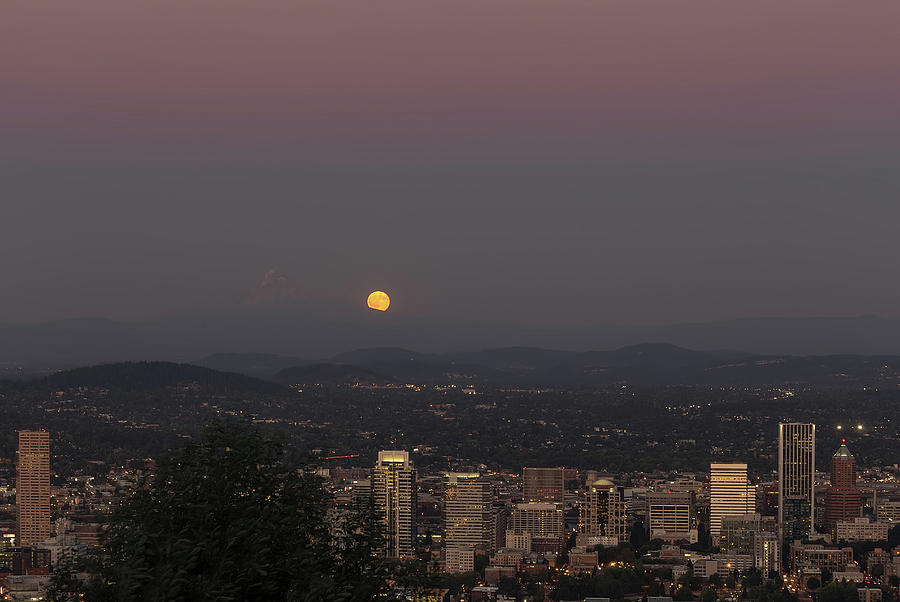 Full Moon Photograph - Full Moon Rising from the East by David Gn
