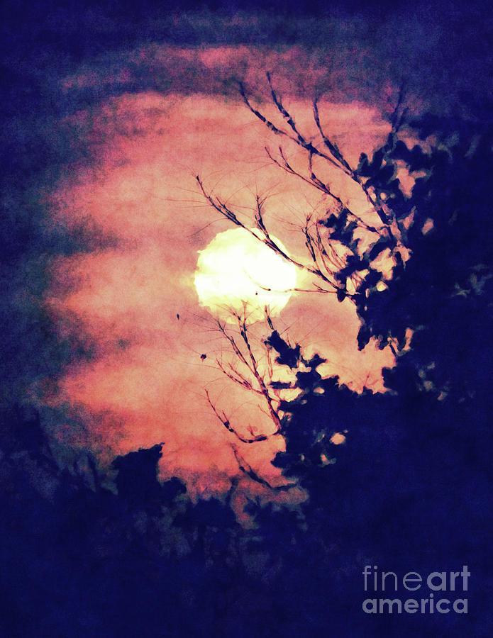Moon Digital Art - Full Moon Silhouette by Phil Perkins