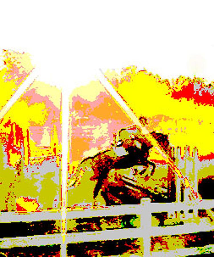 Horse Digital Art - Fun In The Sun by Donna Thomas