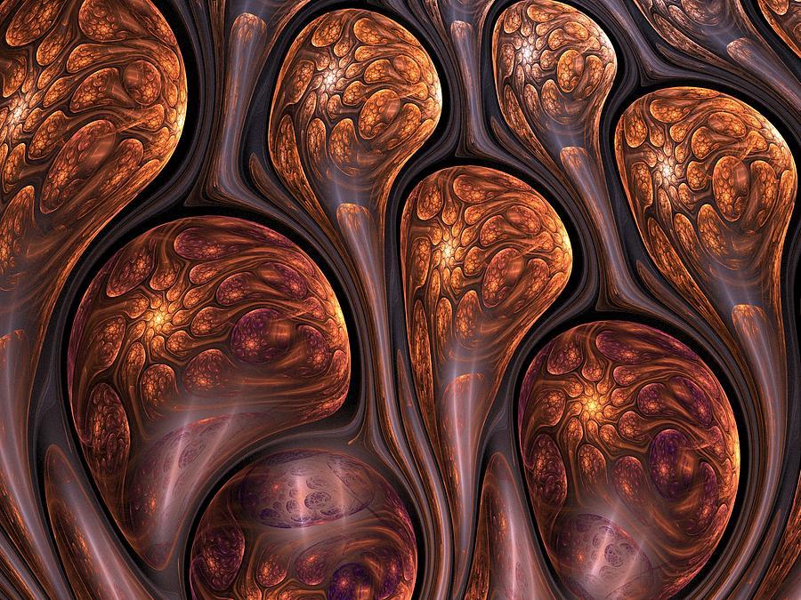 Fractal Digital Art - Funghi Flow by Amorina Ashton