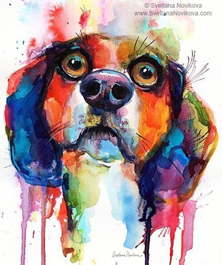 Watercolor Photograph - Funny Beagle Watercolor Portrait By by Svetlana Novikova