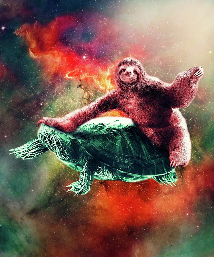 Sloth Digital Art - Funny Space Sloth Riding On Turtle by Random Galaxy
