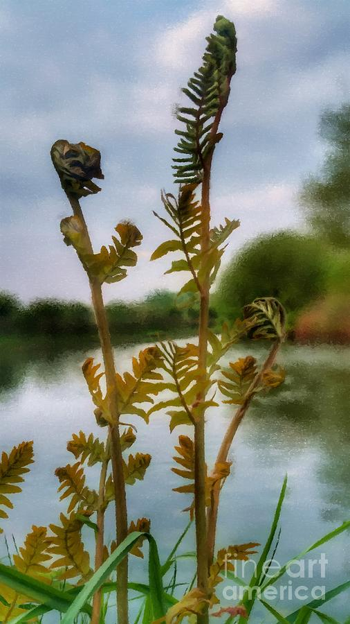 Furled by Abbie Shores
