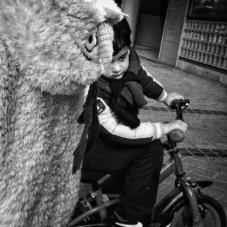 Kids Photograph - Furry In A Hurry! #kids #bike #bnw by Rafa Rivas
