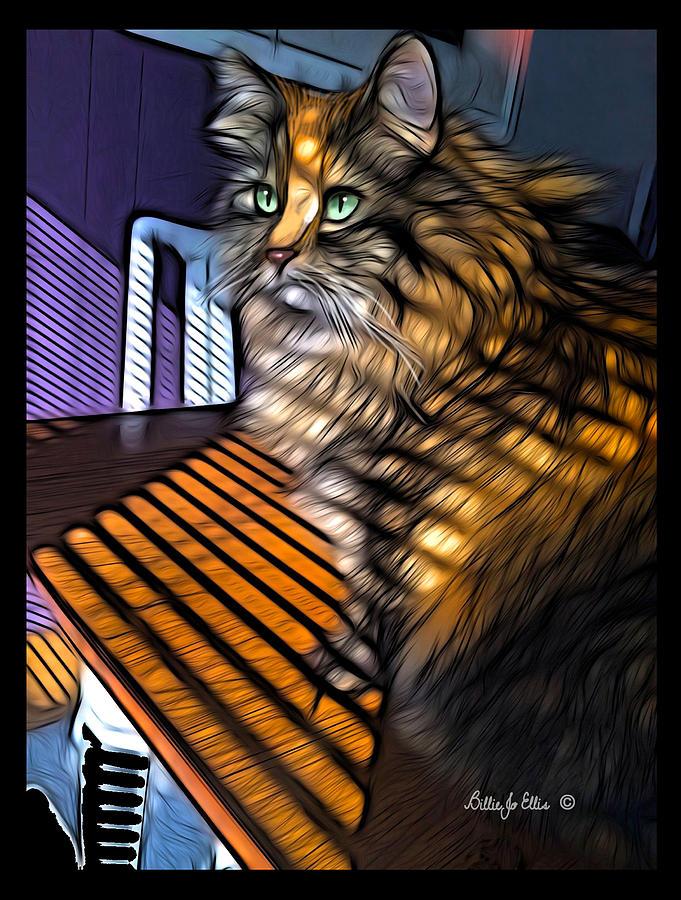 Cat Digital Art - Furry Sunlines by Billie Jo Ellis
