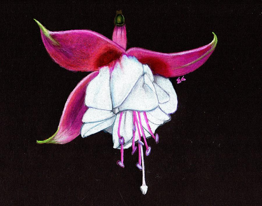 Fuschia Painting - Charm by Ekta Gupta