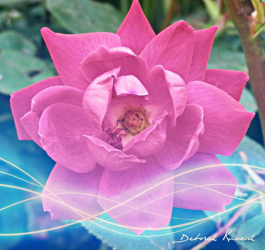 Fuschia Flower Energy by Deborah Kunesh