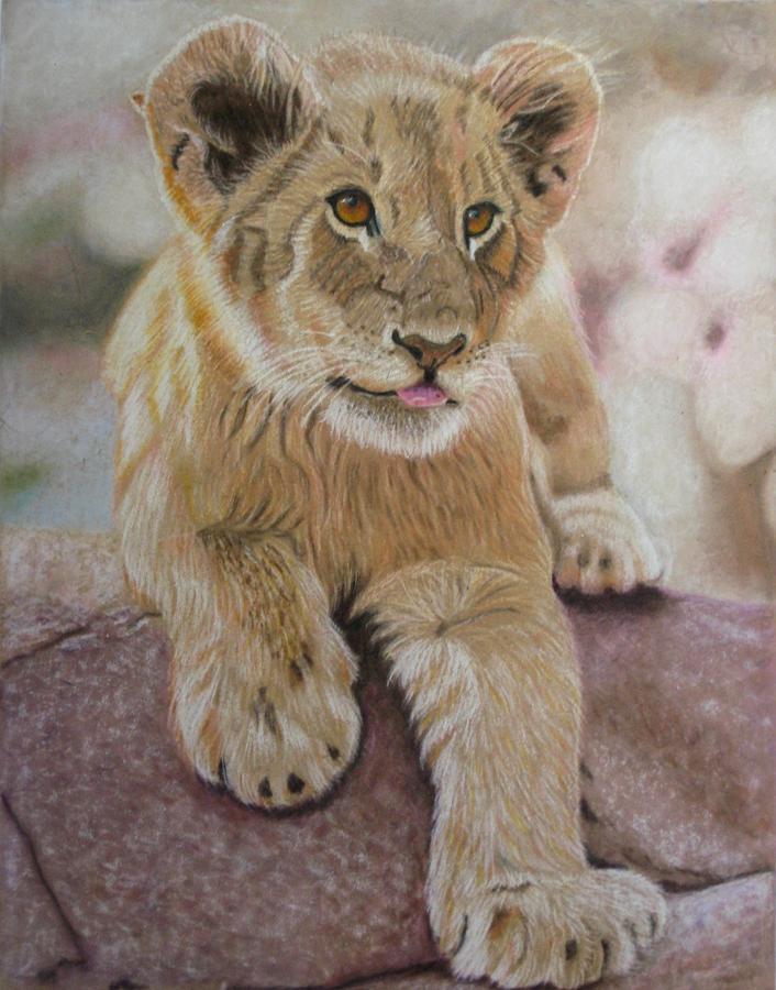 Lion Drawing - Future King by Lori Hanks