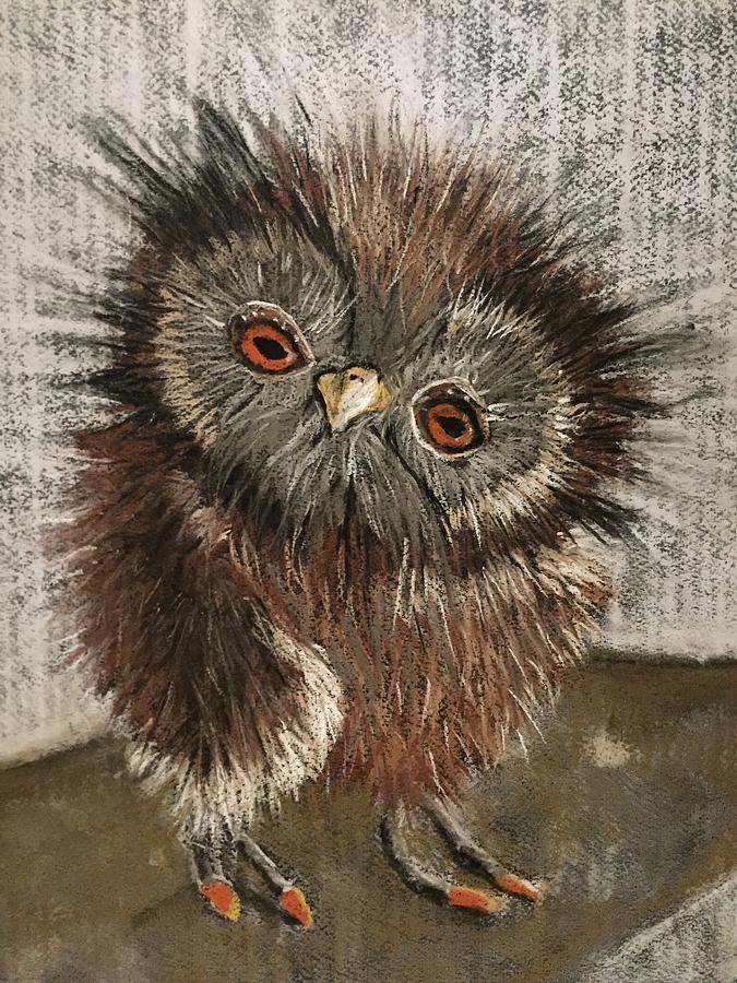 Owl Drawing - Fuzzy Owl by Cristel Mol-Dellepoort