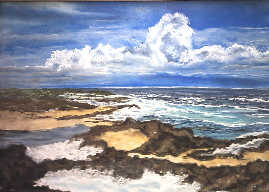 Galapagos Islands Painting by Dick Stolp