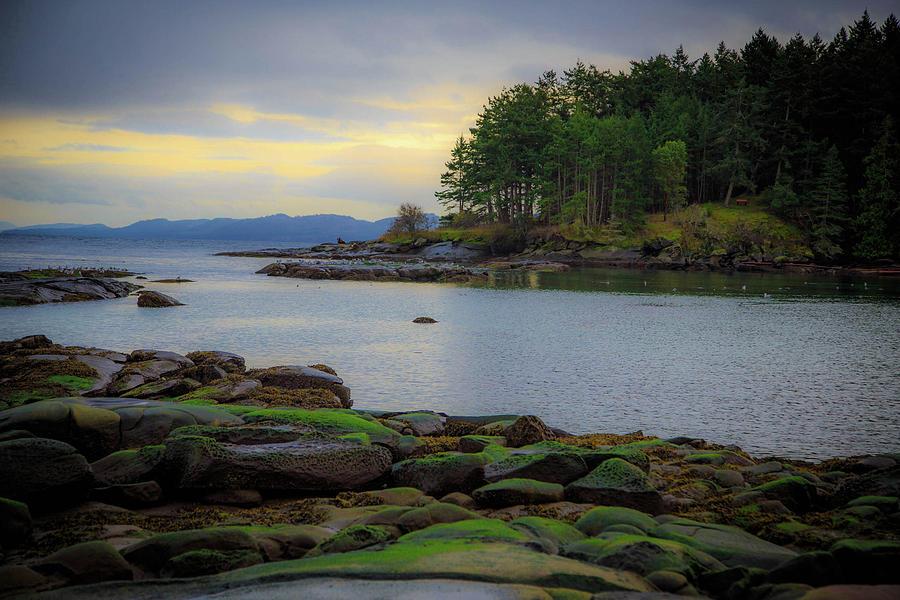 Galiano Photograph - Galiano Island Inlet by Dan Pearce