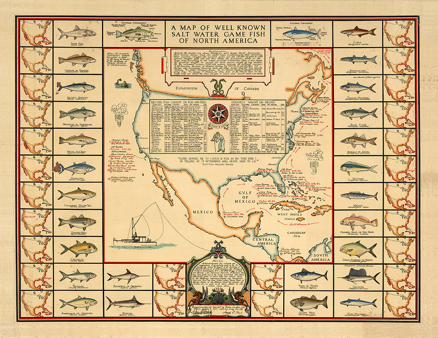Game Fishing Chart Of North America - Game Fish Varieties - Illustrated Map For Anglers Drawing
