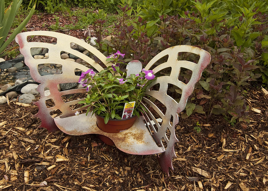 Master Gardeners Association Photograph - Garden Art by Paul Cannon