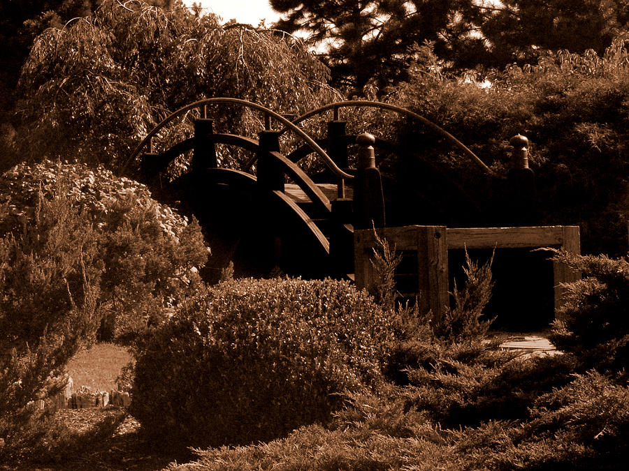 Sepia Photograph - Garden Bridge by Audrey Venute